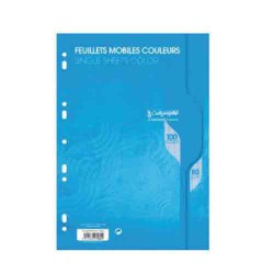 Feuillets mobiles A4 Seyes 100p 80g Calligraphe CLAIREFONTAINE bleu
