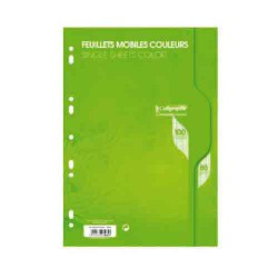 Feuillets mobiles A4 Vertes Seyes 100p 80g Calligraphe CLAIREFONTAINE