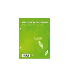 Feuillets mobiles A5 Seyes 100p 80g Calligraphe CLAIREFONTAINE vert